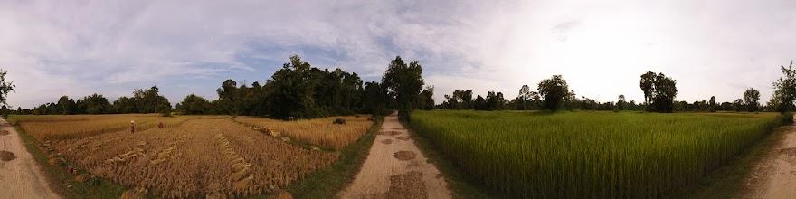 Photo: Laos, Si Phan Don, Don Khon