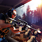 Wild Hunter Simulator file APK Free for PC, smart TV Download