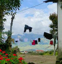Photo: Domestic scene along the road