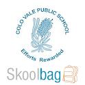 Colo Vale Public School icon