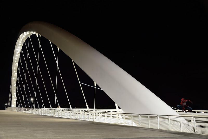 I tiranti del ponte di 7roses
