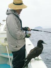 Photo: しかし、慣れた「鳥」だ事! 何か会話でもしている様な・・・。  この後、どっか飛んで行きました。 フンを残して。