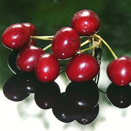 CHERRIES by Wojtylak Maria - Food & Drink Fruits & Vegetables ( red, fruits, cherries, juicy, sweet, delicious, food )