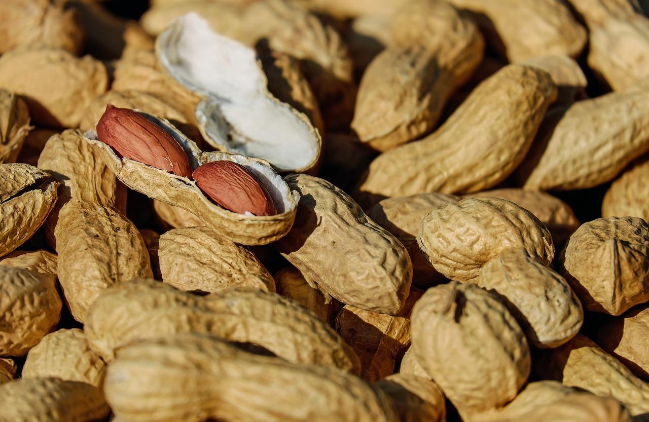 koorimata maapähklid