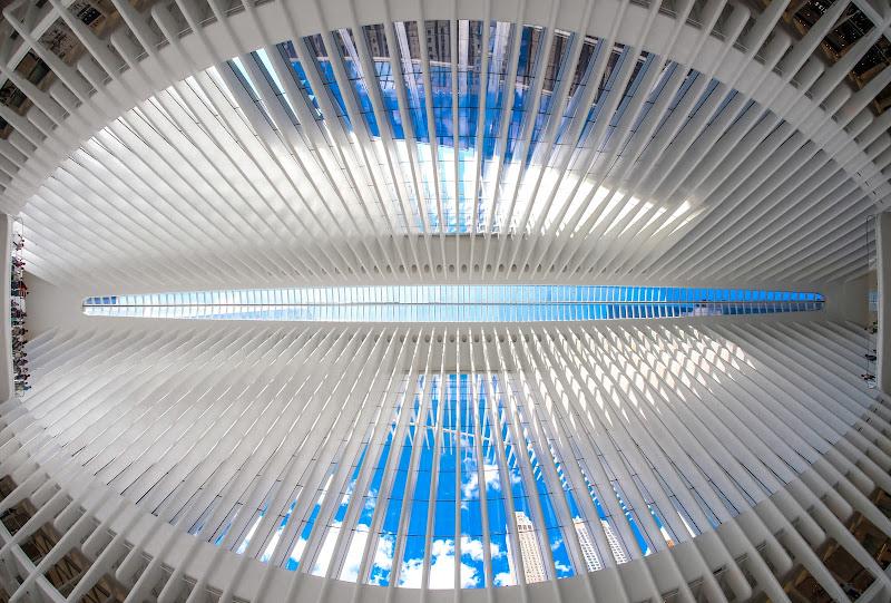 Oculus di tonino_de_rubeis