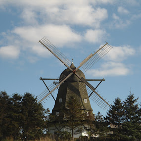 Windmill by Debbie Baxter - Buildings & Architecture Other Exteriors