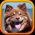 Породы собак беспл. icon