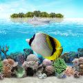 Tropical Ocean Wallpaper Lite APK