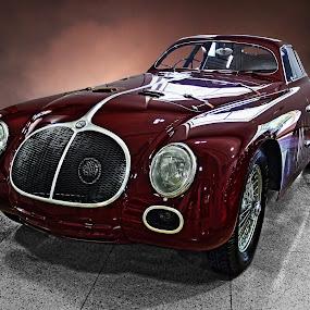ALFA by JEFFREY LORBER - Transportation Automobiles ( car photos, 1939 alfa, alfa, lorberphot, 1939, rare cars, rust 'n chrome, san francisco, jeffrey lorber,  )
