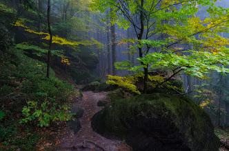 """Photo: Dieses Upload ist eine Art Ankündigung. ;) Wie man schon aus meinem Stream erfahren hat, war ich Ende Oktober auf Motivsuche in dem National Park """"Sächsische Schweiz"""" unterwegs. Diese kurze Reise hat so viele tolle Erinnerungen hinterlassen, dass ich entschieden habe einen richtigen Artikel mit mehr Bilder und Details zu schreiben. Ich habe das noch nie gemacht (schreiben), aber irgendwie hab ich in mir einen versteckten Drang diese Erfahrungen und Gefühle zu verbreiten ;) Ich bearbeite noch ein paar Aufnahmen, die IMHO sehenswert sind und dann hoffentlich bald wird was zu sehen und zu lesen sein ;)  #landscapephotography curated by +Margaret Tompkins, +Ke Zeng, +David Heath Williamsand +paul t beard+Landscape Photography  +HQSP Landscape #hqsplandscape  #1000photographersaroundtheworld +10000 PHOTOGRAPHERS around the World+Robert SKREINER and +Walter Soestbergen #photoplusextract  #landscape  #germany  #saxony"""