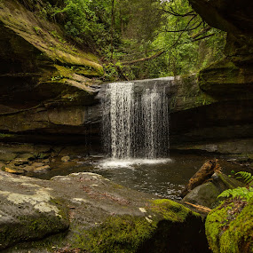 Dog Slaughter Falls by Donna Sparks - Landscapes Waterscapes ( waterfalls, remote, kentucky,  )