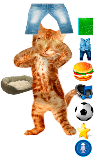リアル話す猫