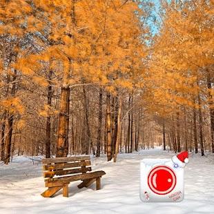 Winter Cam 2018 - náhled