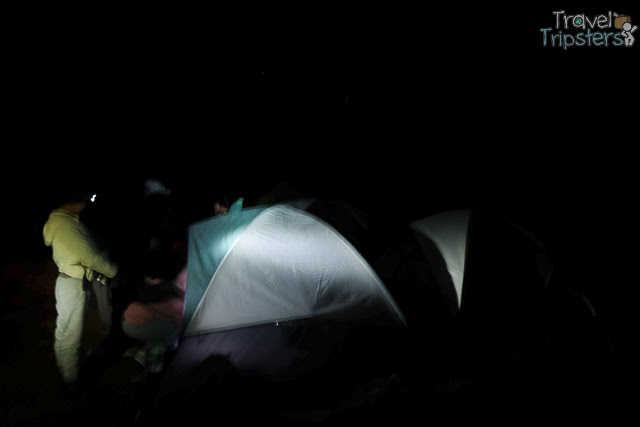 mt pulag camp 1