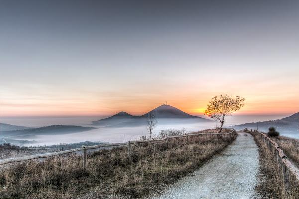 Sulla via del tramonto di Filippo Trevisan