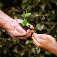 La terra è un dono... di utente cancellato