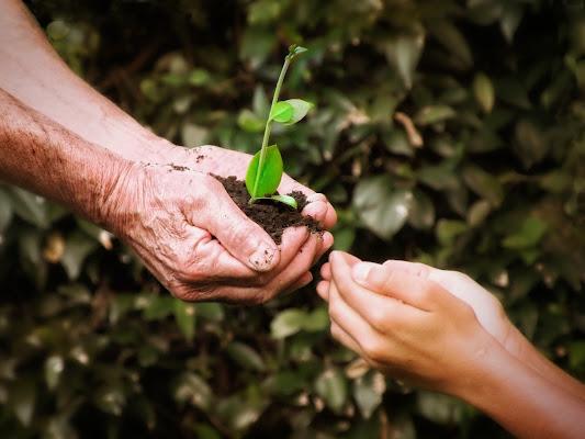 La terra è un dono... di GabrieleT