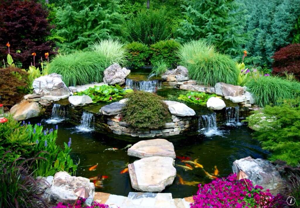 ho-ca-koi-chau-a-koi-pond-asian.jpg