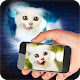 Projector Cat 3D Prank