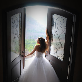 Bride with a View by Lisa Raith - Wedding Bride ( pwcopendoors-dq )