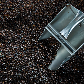 Coffee Beans by Jeremy Mendoza - Food & Drink Alcohol & Drinks ( kapeng barako, beans, coffee, coffeebeans, philippines, , #GARYFONGDRAMATICLIGHT, #WTFBOBDAVIS )