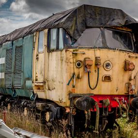 Abandoned by John Walton - Transportation Trains ( train, heritagefocus, class 50, british rail, abandoned )