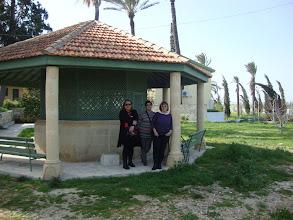 Photo: The Greek teachers (only female)