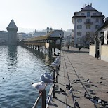 River Reuss in Lucerne in Lucerne, Lucerne, Switzerland