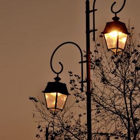 Light me up! by Daniela Elena - City,  Street & Park  Street Scenes ( port, lights, sunset, evening )