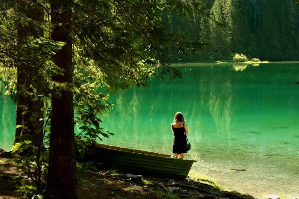 E il lago si tinge di verde di renzo brazzolotto
