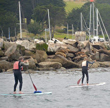 Photo: 38. People explore the bay in a variety of ways.These two are doing something called standup paddleboarding (or SUP) - looks like fun! ... Many choose to venture out in kayaks.
