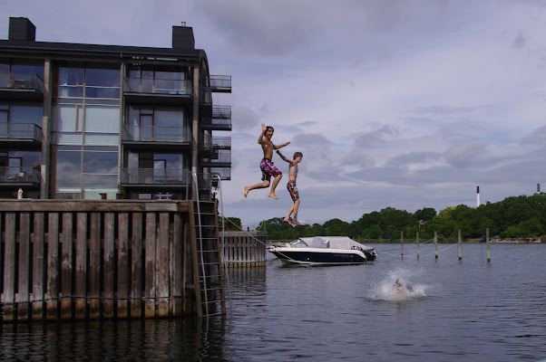 Bagno nei canali di Copenhagen di Magendie