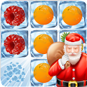 Icy Fruits icon