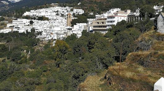 Bayárcal pide el Princesa de Asturias para los mineros del rescate a Julen