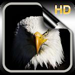 Eagle Live Wallpaper HD Icon