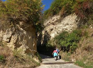 Photo: Lösshohlweg Eichgasse bei Bickensohl. 1 Lösshohlwege sind typische Landschaftselemente des Kaiserstuhls, die in erster Linie durch die Nutzung als Wirtschaftswege und durch Erosion nach Starkregen immer weiter vertieft wurden. Aufgrund des  Mikroklimas mit sowohl extrem heißen als auch schattig kühlen Bereichen sind sie Lebensraum einer artenreichen Flora und Fauna. Die Eichgasse gilt als der imposanteste der noch erhaltenen Hohlwege. Mehr unter: http://www.bund-rvso.de/kaiserstuhl-loess-hohlwege.html