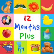 First Words 12 Months Plus (Baby Flash cards)