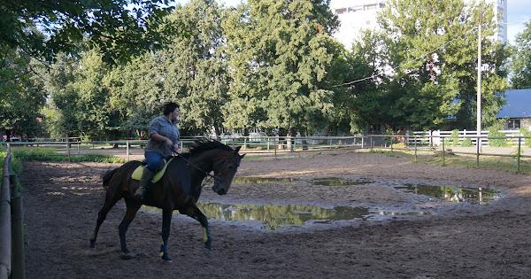 Конный клуб Столичный кентавр
