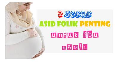 asid-folik-penting-untuk-ibu-hamil