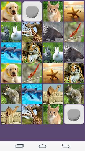 動物記憶遊戲