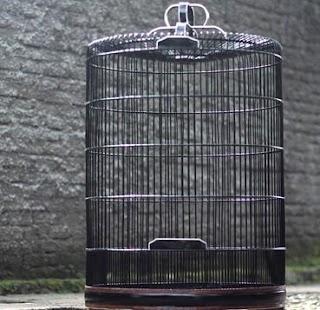 Bird cage - náhled