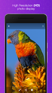 Aplikace Quick Gallery - Photo Editor 4bZml4z-1pXGYUhgVJDGikdzqqHfhH6K78k-o-kXihKZJLdVKdzrH72KGIQB4exv7Qg=h310