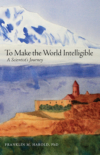 To Make the World Intelligible cover