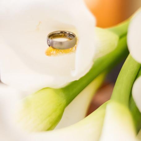 Fotógrafo de bodas Diana Padron (DianaPadron). Foto del 30.01.2018