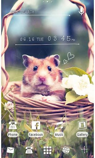 ★免費換裝★可愛的小倉鼠