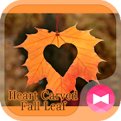 Romantic Wallpaper Heart Carved Fall Leaf Theme