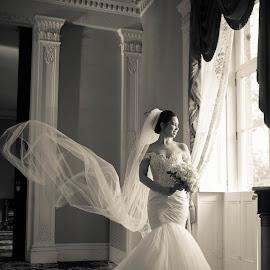 A {+} W by Raul Morillo - Wedding Bride ( wedding photography, wedding day, wedding, wedding dress )