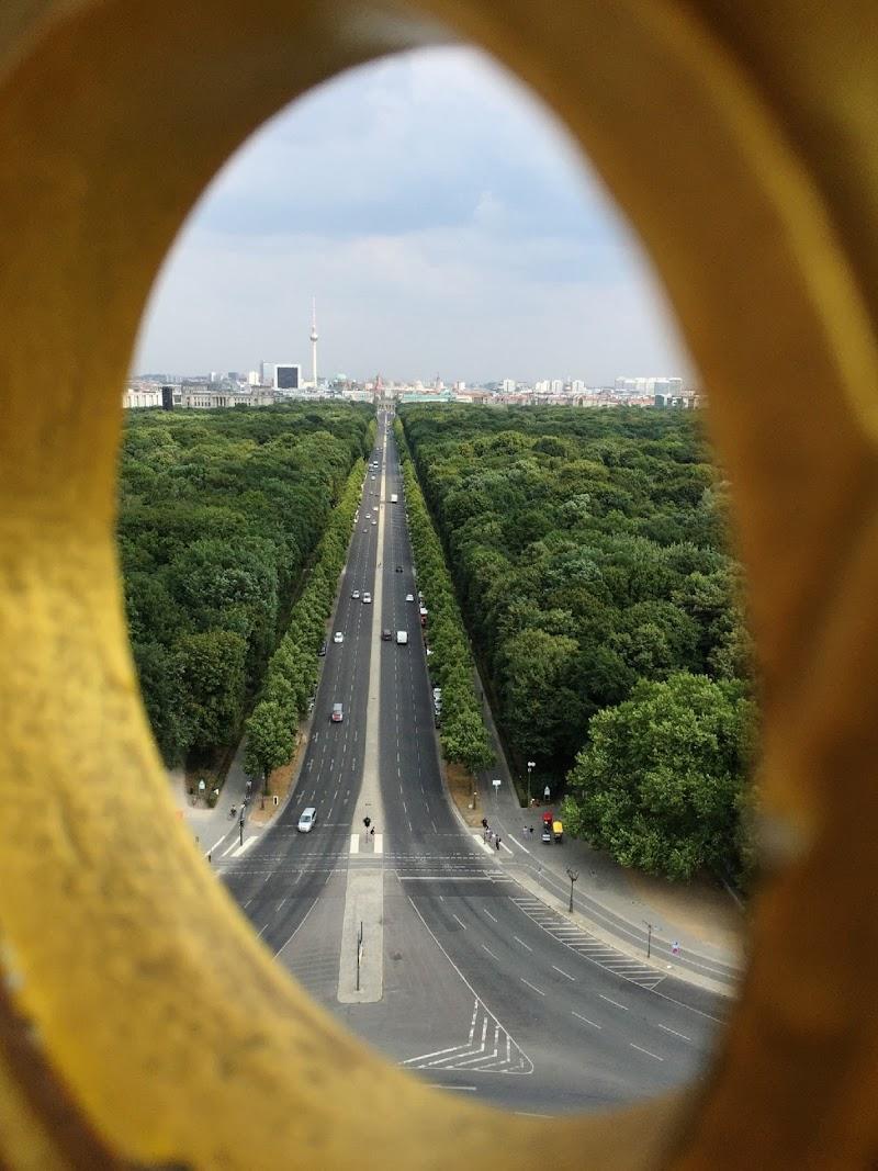 anelloprospettico di Alepin