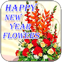 Happy New Year Wallpapers Free icon