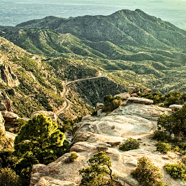 Mountain Valley by Richard Michael Lingo - Landscapes Mountains & Hills ( mountains, green, arizona, valley, landscape )